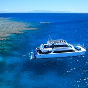 Calypso at reef